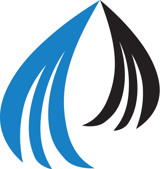 Peniel Technology Logo